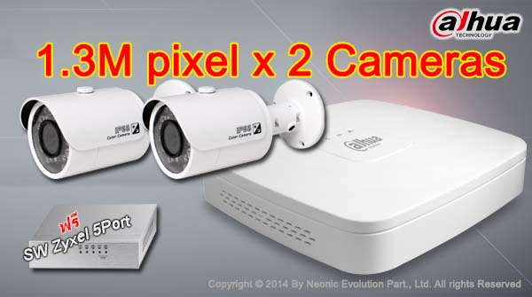 Promotion IP camera 1.3M 2CH Dahua